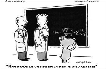 Расчеты новых тарифов ОСАГО, представленные РСА, российскими и зарубежными специалистами области страхования, не убедили депутатов Госдумы.